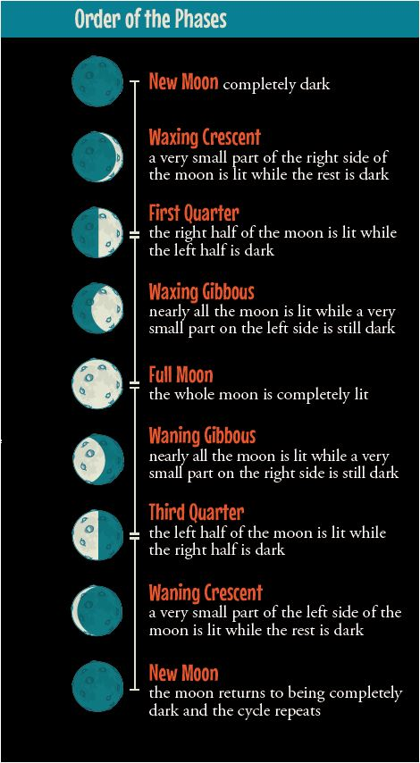 Order of Moon Phases