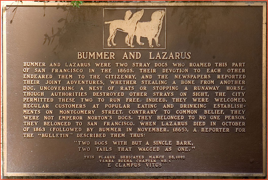 Bummer and Lazarus, the famous dogs of the 1850s